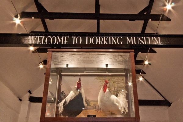 Dorking Museum and Heritage Centre in Redhill